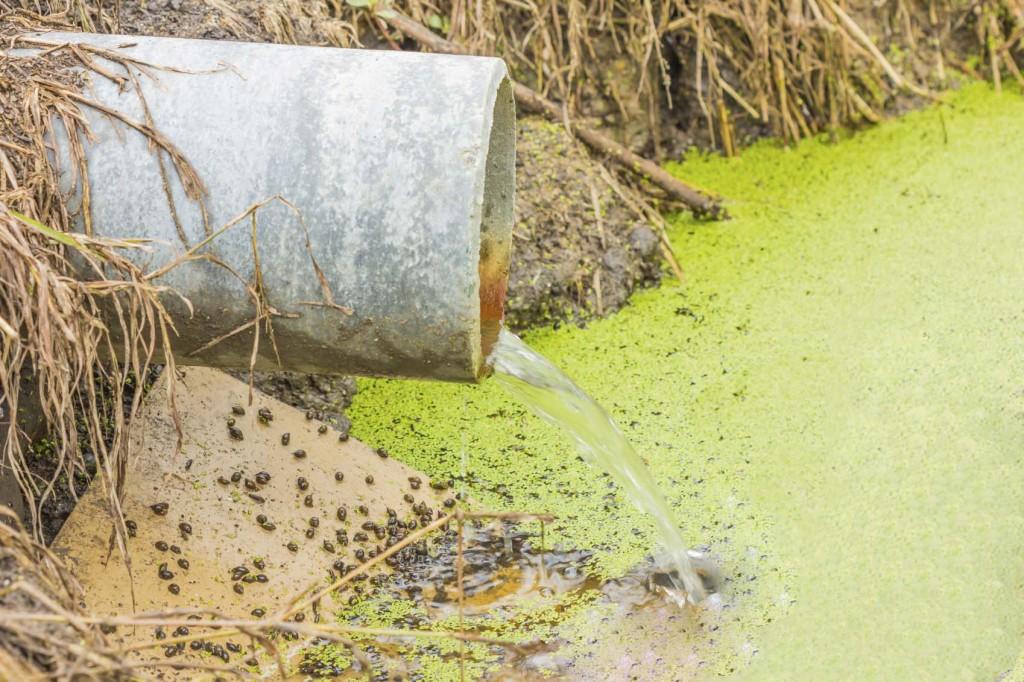المخلفات الطبية السائلة ومياه الصرف الصحي