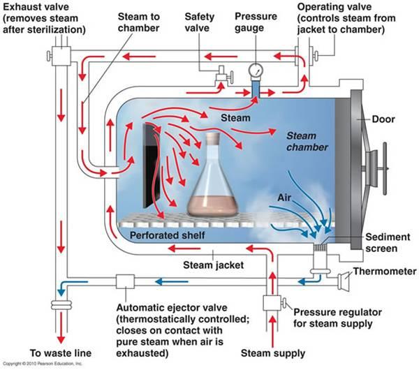 معالجة أكياس وحدات الدم المرفوضة في مصارف الدم: التطهير بالكيماويات أو التعقيم بالبخار