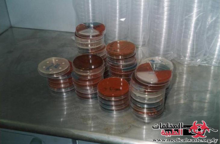 أطباق المزارع البكتيرية في معامل التحاليل الطبية بمدينة طرابلس- ليبيا.