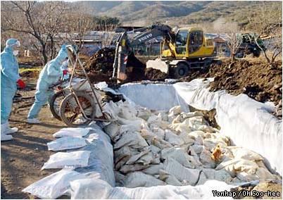 النفايات الباثولوجية البيطرية