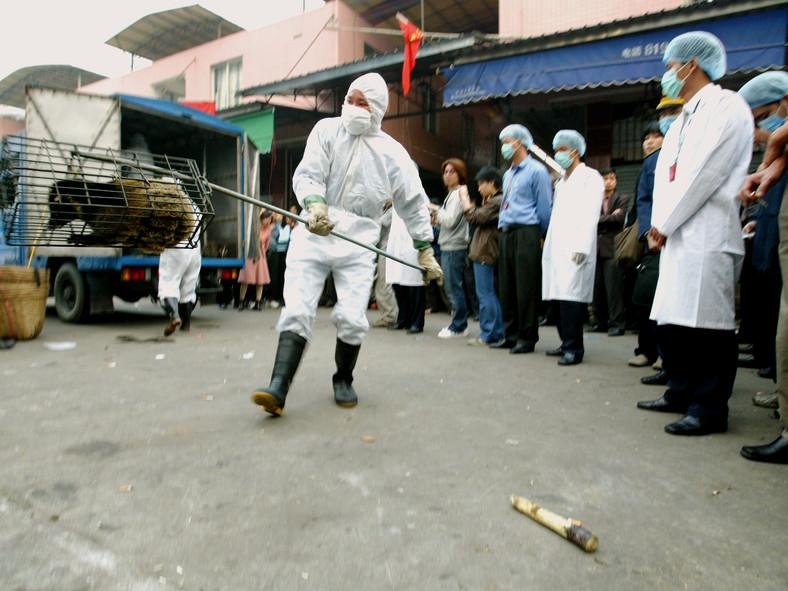 فيروس الكورونا والتجارة غير القانونية للحيوانات البرية.